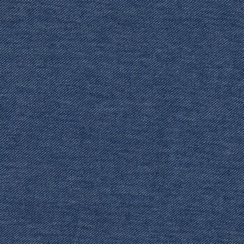 Jersey - Jeansoptik (bio)